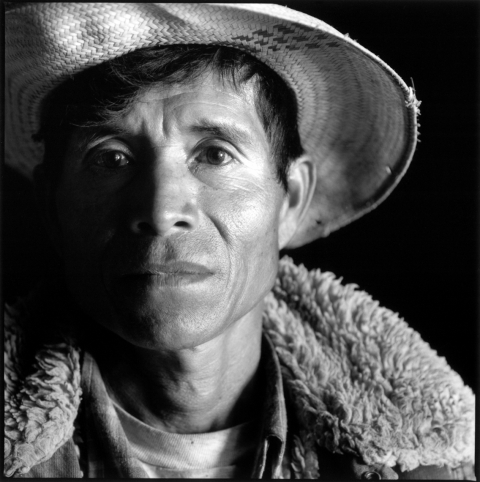 Mexico - farm worker man close
