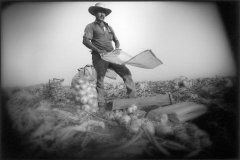 Mexico - farm worker man standing in field