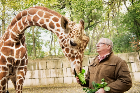 Animal Planet, Discovery, Bronx Zoo - Giraffes