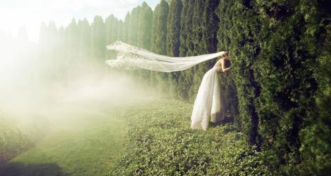 Savannah Veil
