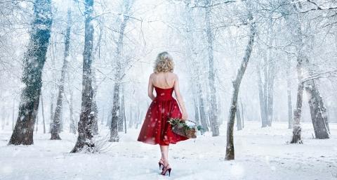 Sandy Snowy Woods